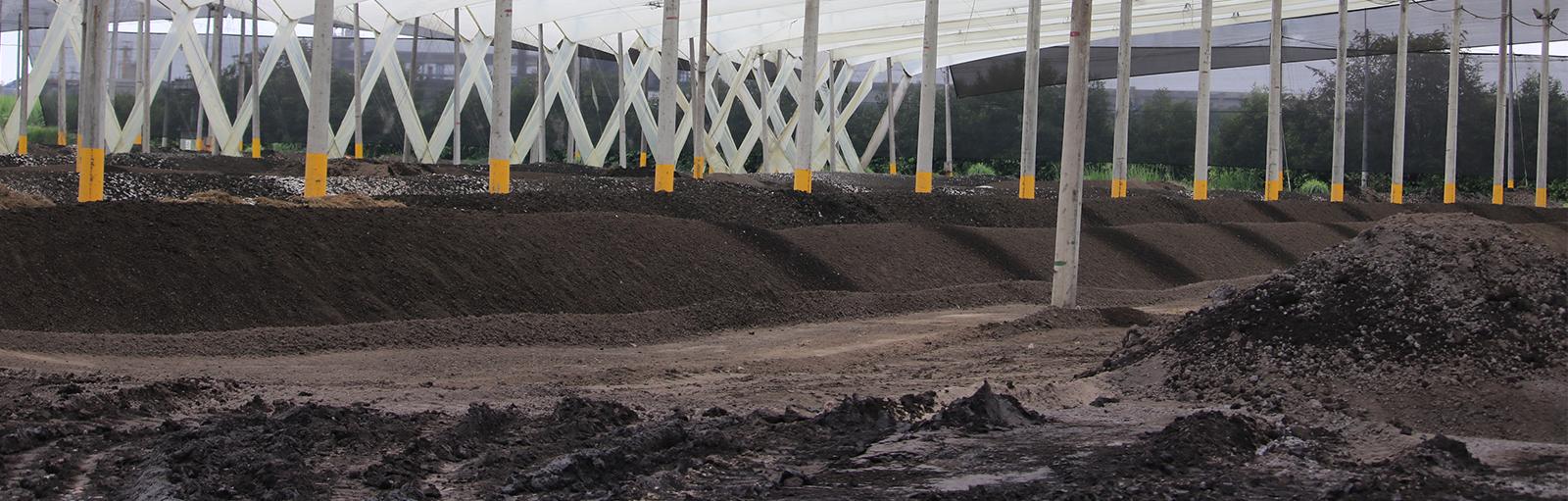Control of odours in sludges: Compost Processing Plant in Ingenio Del Cauca