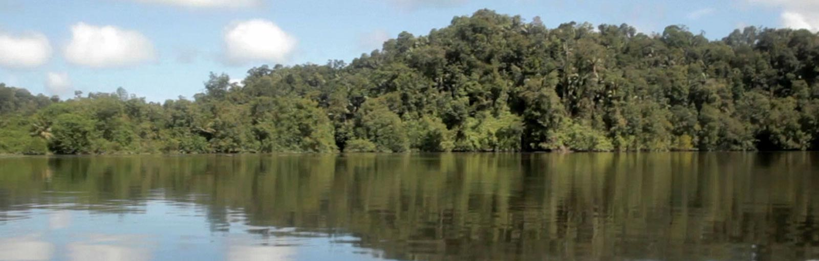 Bioremediation of a river contaminated with hydrocarbons